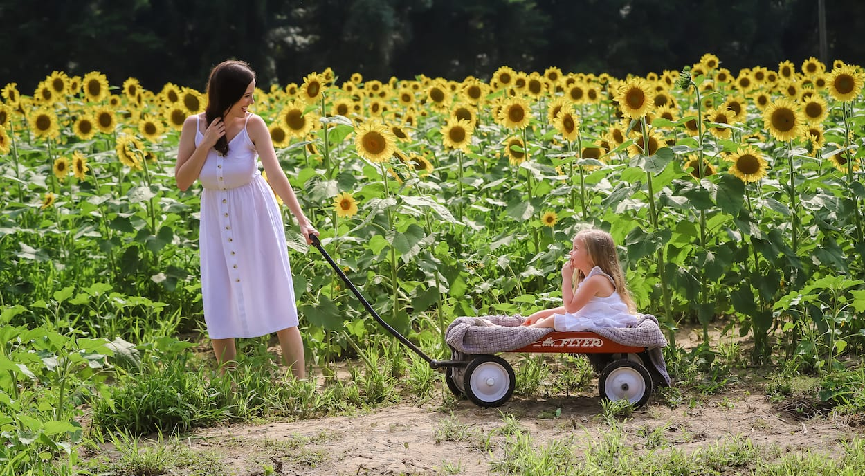 Mother pulling daughter in sunflower field | Charleston Sunflower Field | Life With Ashley T